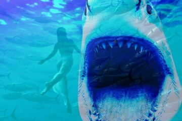 Lady With Shark  | Afmeting X Afmeting | Prijs op Aanvraag